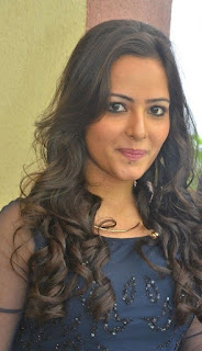 Actress Aanchal Stills in Blue Short Dress at Sei Movie Launch 0003