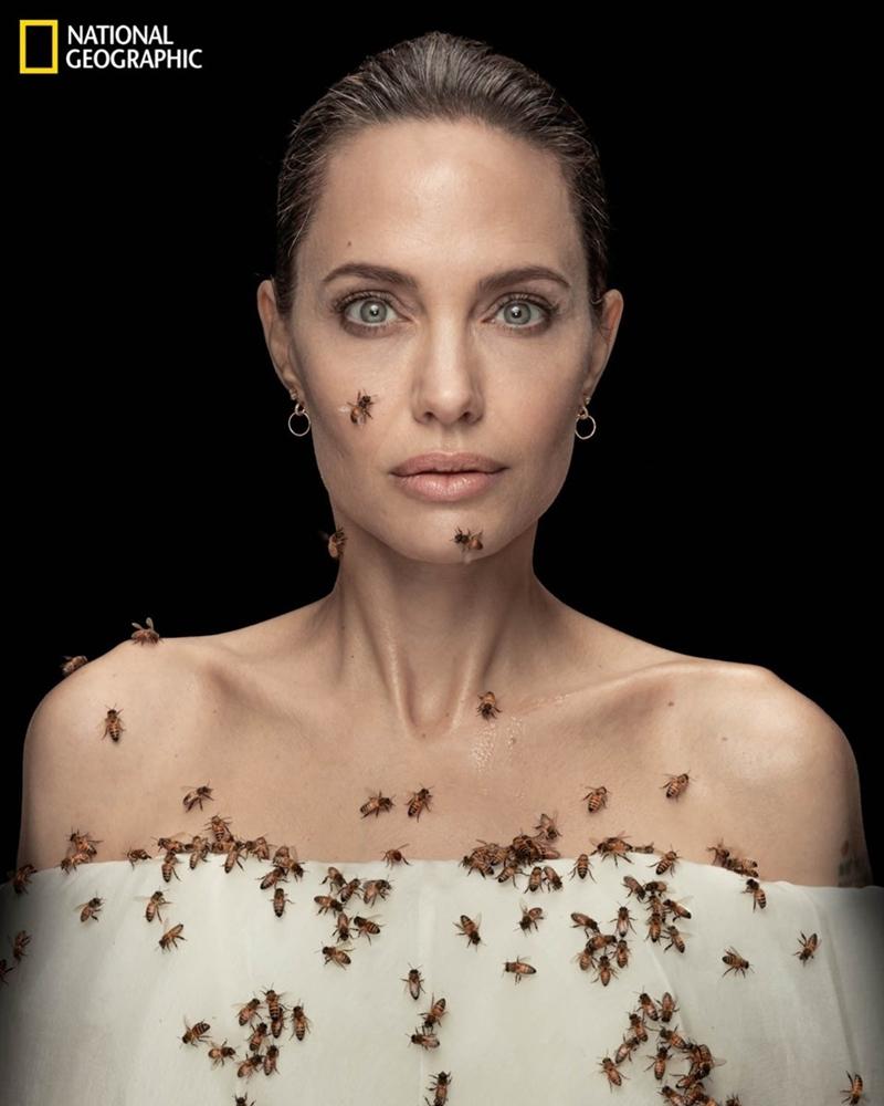 Angelina Jolie arılarla 18 dakika nasıl durdu?