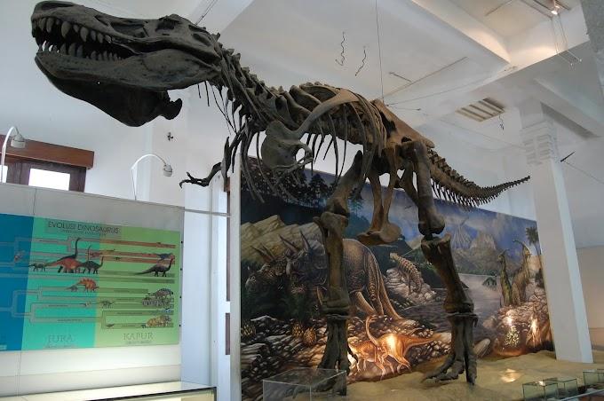 3 Wisata Museum di Bandung yang Bisa Kamu Kunjungi