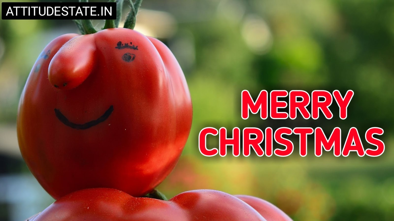 funny merry christmas and happy new year messages