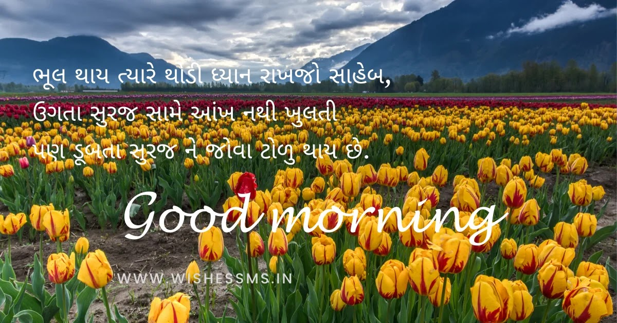 gujarati ma good morning message, good morning images in gujarati, morning thoughts in gujarati, good morning thoughts in gujarati, good morning gujarati quotes, good morning gujarati status, good night shayari gujarati, morning quotes in gujarati
