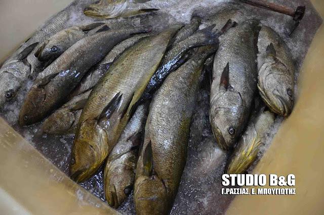 Δημοσθενης Δρούγκας: Γιατί εξαπατά τον κόσμο ο κ. Μπαρού, πουλώντας ψάρια ιχθυοτροφείου σαν ελεύθερης αλιείας;