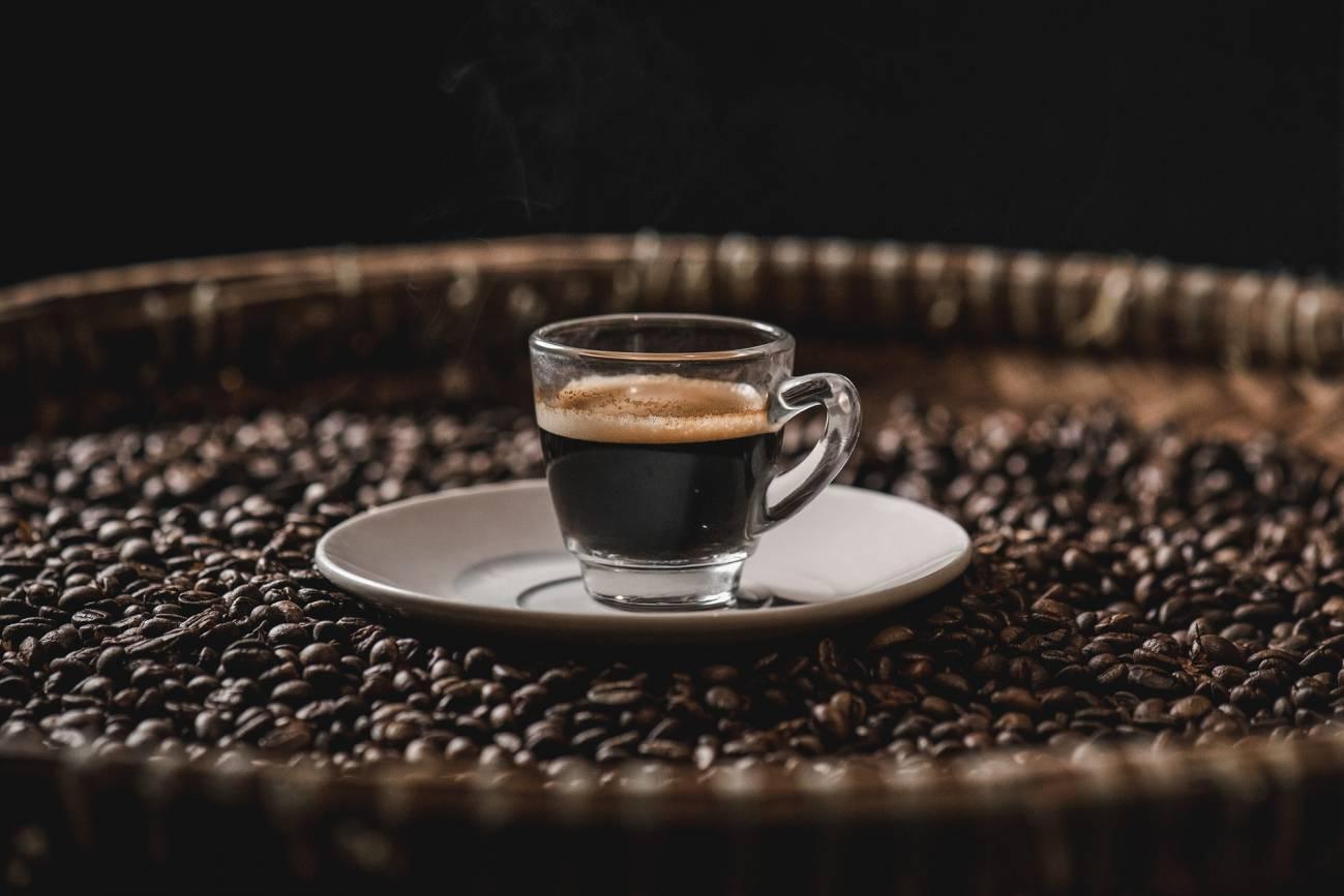 26 excombatientes se gradúan como técnicos en producción y transformación del café