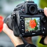 Sebelum Membeli Kamera DSLR, Perhatikan Dulu Hal Ini
