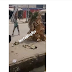 VIDEO: Young boy flogs a masquerade that assaulted him in Calabar