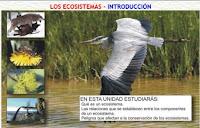http://www.clarionweb.es/6_curso/c_medio/cm607/cm60701.htm