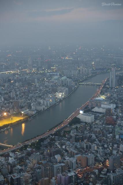 vue-skytree-tokyo