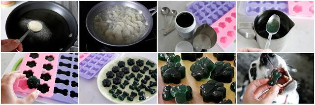 Step-by-step instructions for making spirulina gelatin gummy dog treat