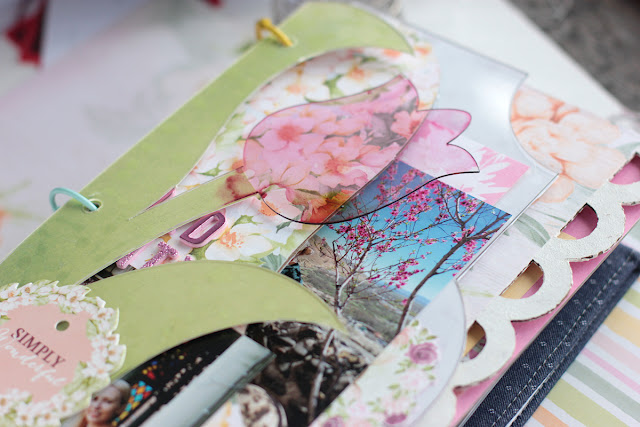 Spring_Mini_Album_Garden_Grove_Elena_Apr9_02.JPG
