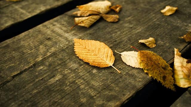 Puisi Terakhir Untuk Kisah Yang Sudah Usang