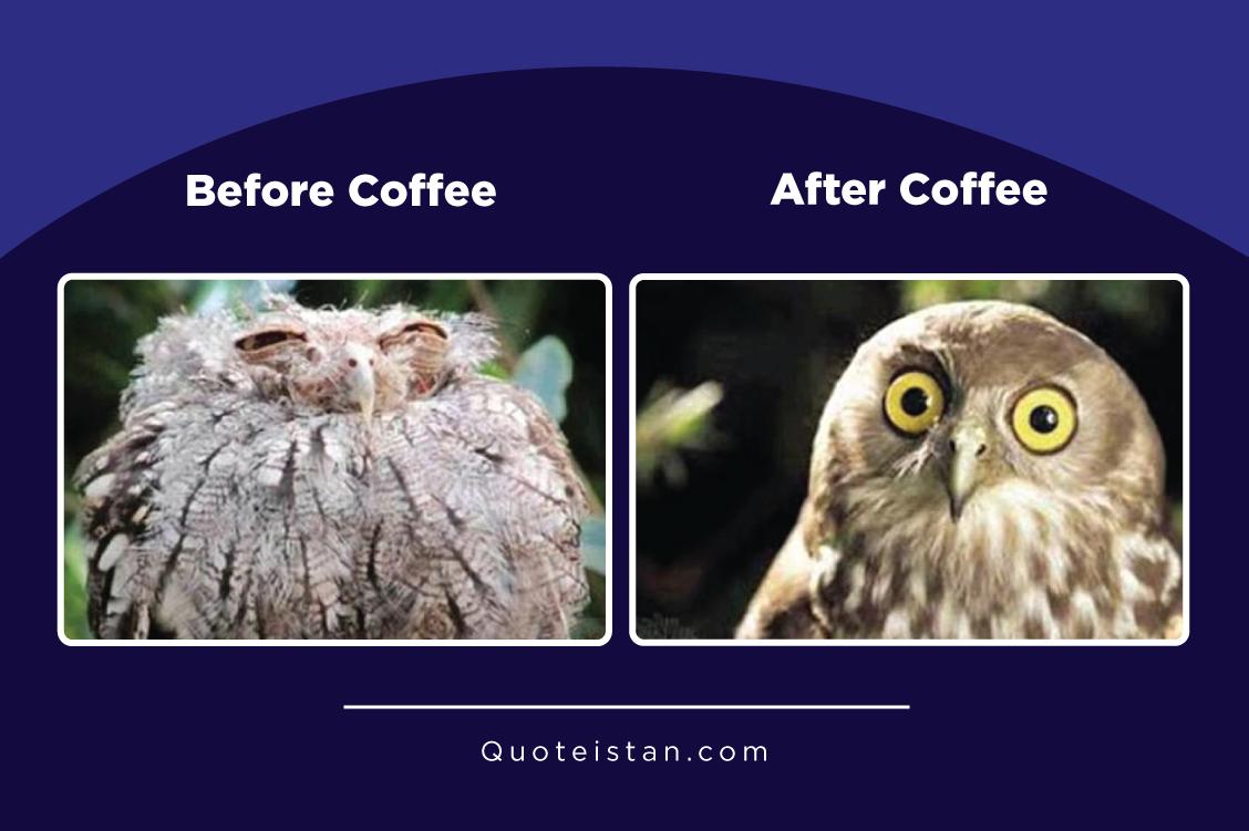 Expectation vs Reality: Coffee