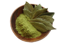 Heal Disease with Bay Leaves