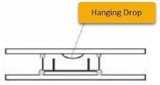 Image: hanging drop technique