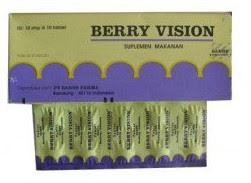 Harga Berry vision Terbaru 2017