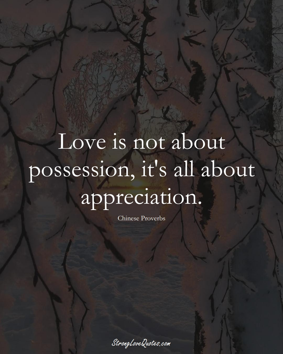 Love is not about possession, it's all about appreciation. (Chinese Sayings);  #AsianSayings
