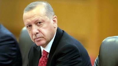 احمد موسى, اردوغان, الاخوان المسلمين, قصر اردوغان,