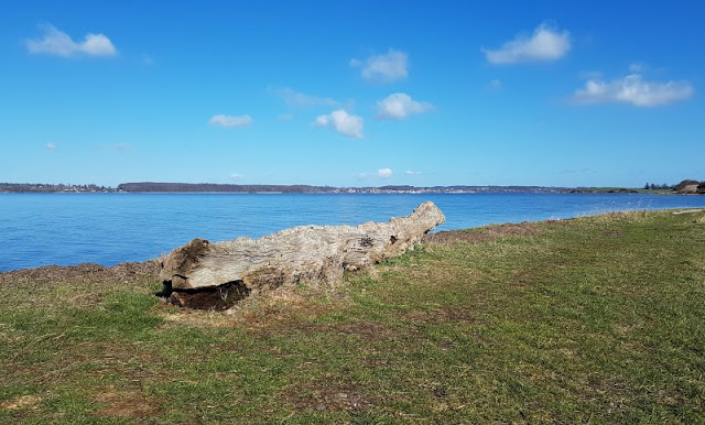 Ein Ausflug nach Kegnæs. Die Natur bei Kegnaes End ist wunderschön und die eigentliche Attraktion auf der Halbinsel.