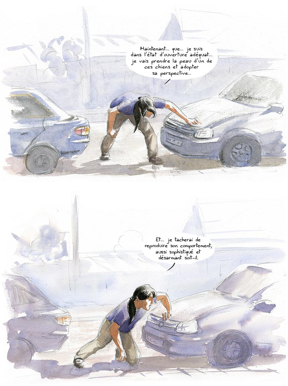 animisme et perspectivisme selon Descola