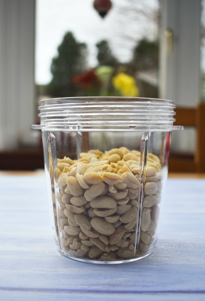 Peanuts in a small blender jug