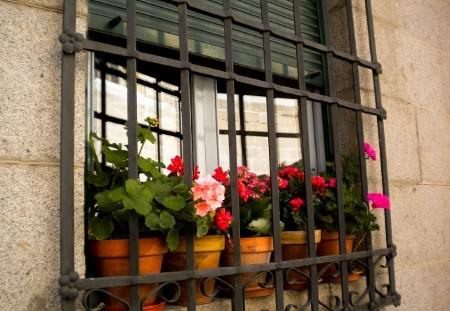Cerrajeria ramajo rejas de hierro para ventanas - Rejas decorativas ...