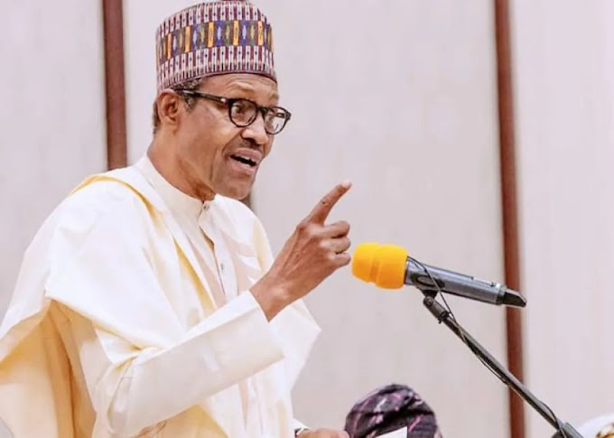 'Nigerians should thank Buhari for tolerating the nonsense they are doing' – Katsina State Governor