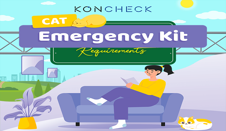 Cat Emergency Kit