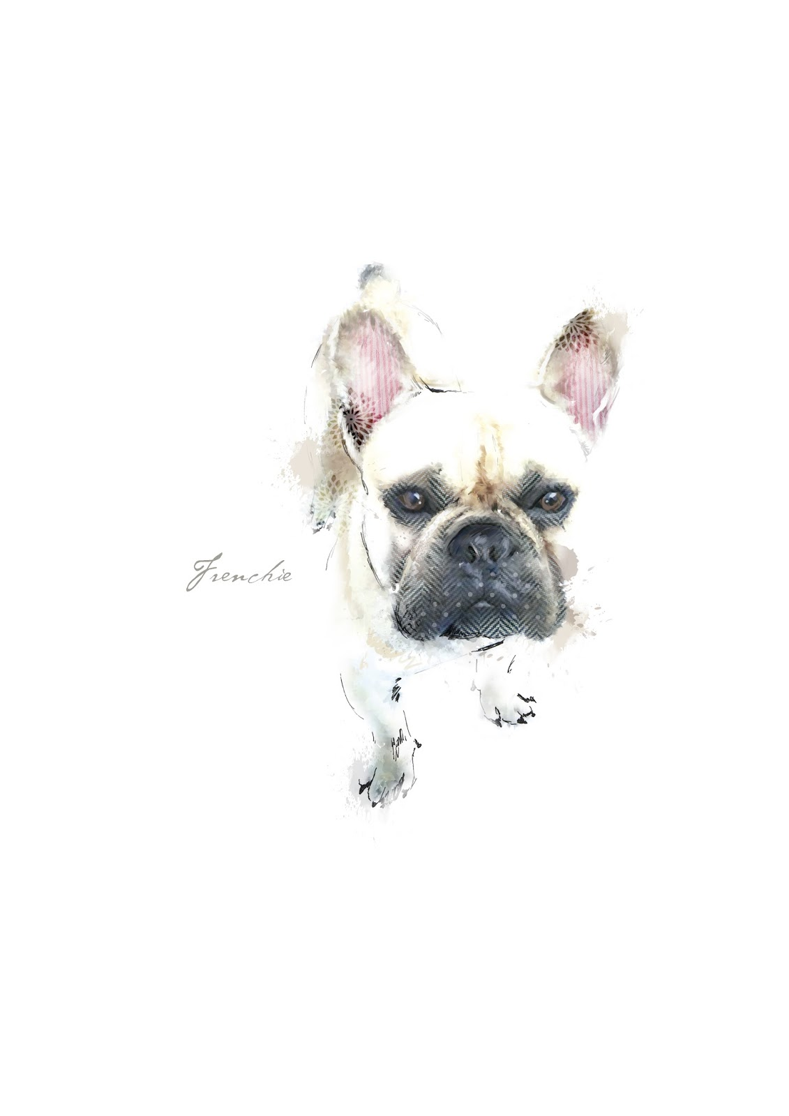 Lola Design: AUCTION French bulldog rescue UK