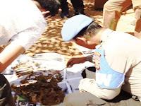 Warga Bonto Kio Dihebohkan Dengan Penemuan Kerangka Yang Diduga Tulang Manusia