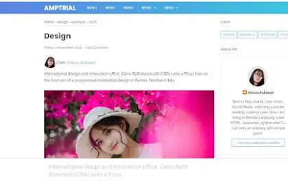 Cara meletakan gambar profile penulis di atas postingan template lama termasuk template premiumnya