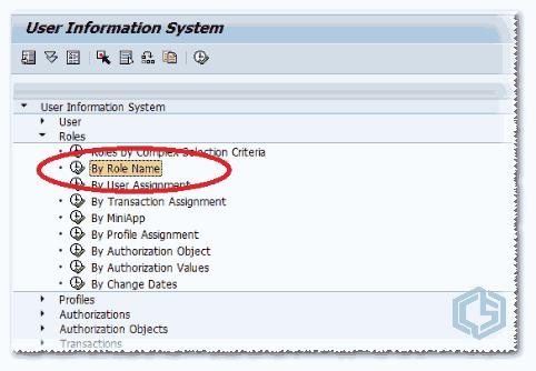 SUIM: Maestro info de usuario - Consultoria-SAP