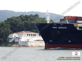 MSC Adriatic