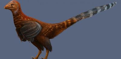 Descoberto dinossauro com penas de animais modernos