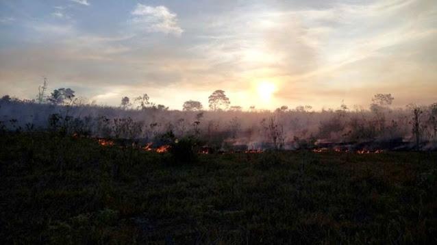 Chamas são combatidas na região de Morro do Chapéu (Foto: Arquivo/Jaime Neto)