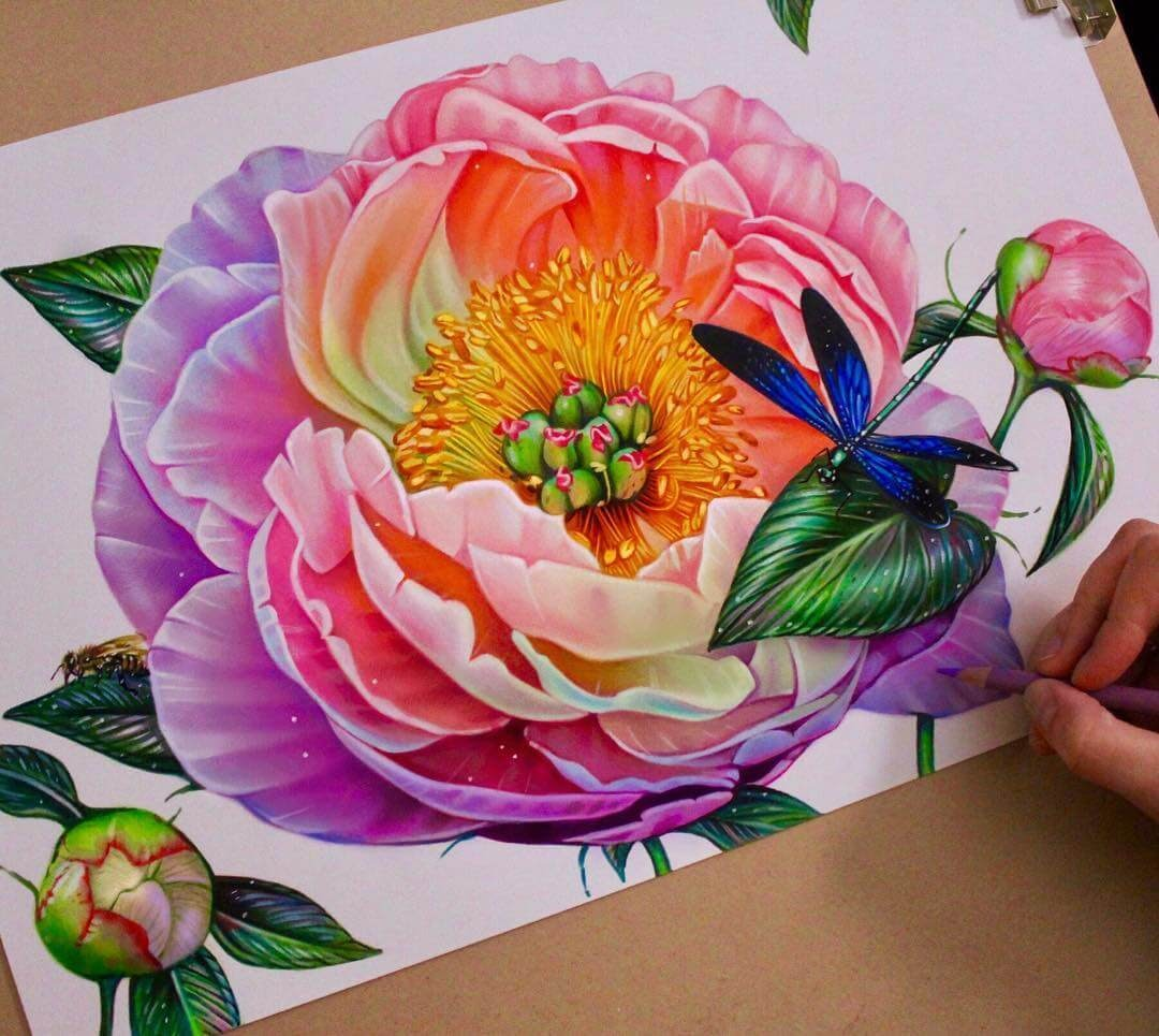 09-Peony-and-Dragonfly-Glowing-Colorful-Drawings-Morgan-Davidson-www-designstack-co