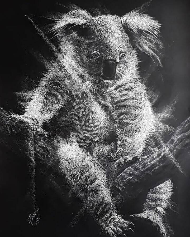 06-Australian-Koala-Natalya-Bassani-www-designstack-co