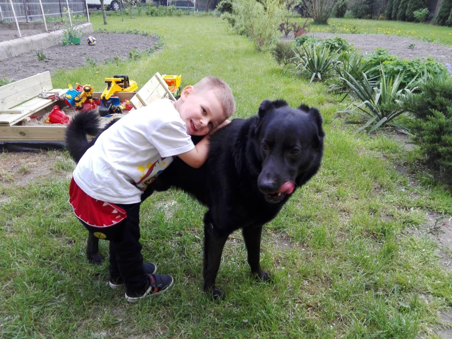 Pies najlepszym przyjacielem... alergika?