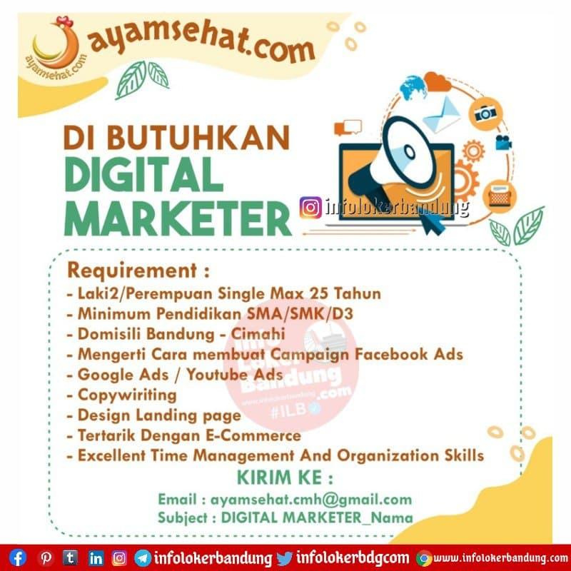 Lowongan Kerja Digital Marketer Ayam Sehat Cimahi April 2021