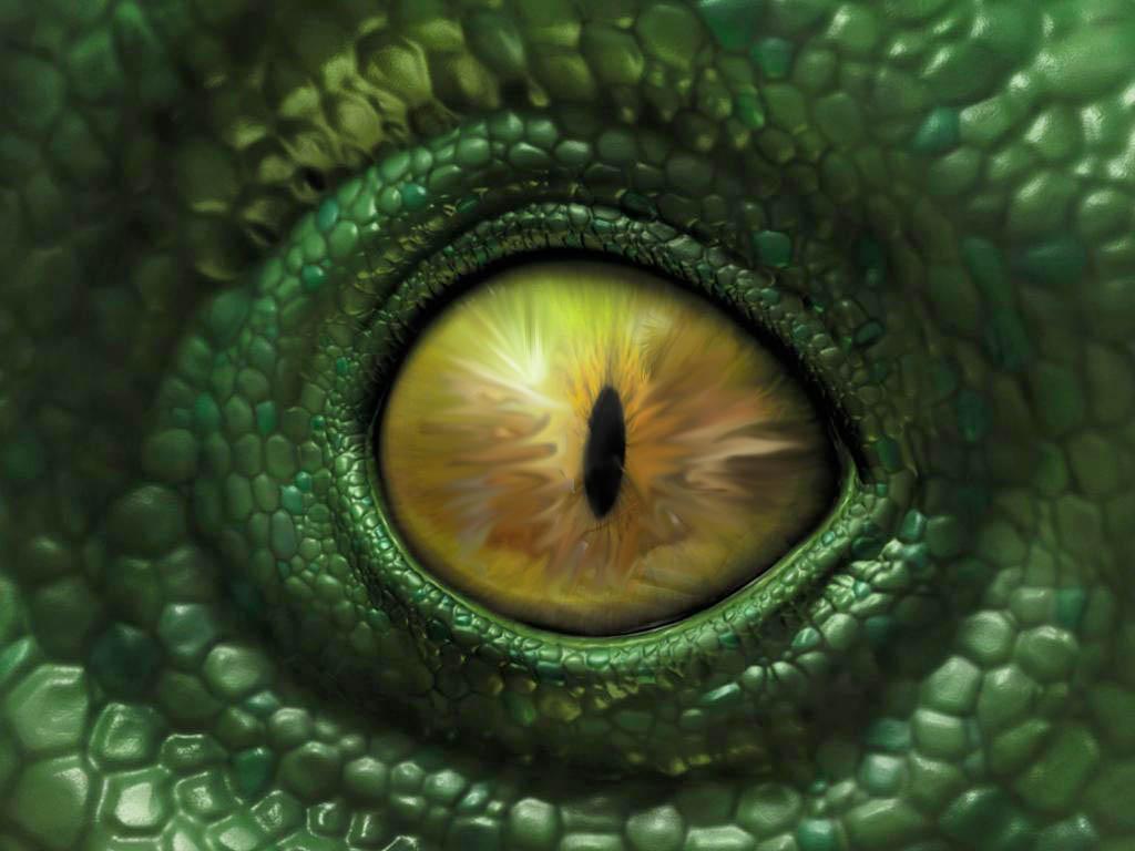 Reptile%2BEye - Trascendiendo al Reptil.