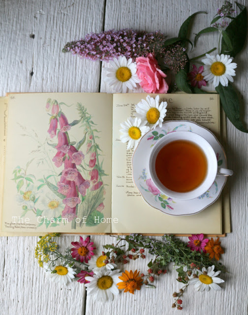 June Visual Tea/Garden Journal: The Charm of Home