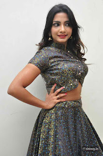 Kamna Singh Stills at Thikka Audio Launch