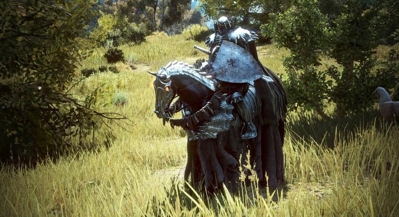 Black Desert: how to get a horse