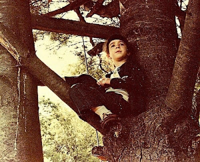 Anne Corwin, as a child of about 7 years old with pale skin and dark hair with bangs. She is sitting on a tree branch while leaning against the trunk and looking into the distance.