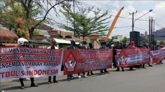Pitbul's Waspadai Pilkada Kabupaten Tasikmalaya Disusupi Ajaran Syiah