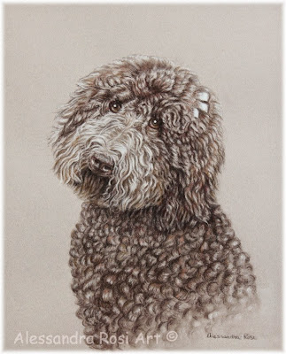 Pet Portrait Drawing, Pencil portrait commission
