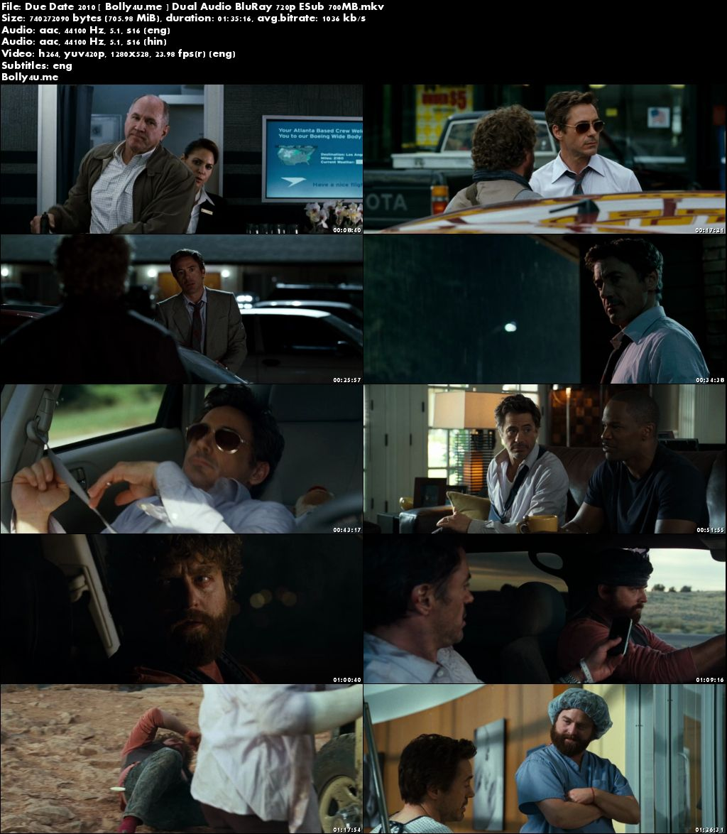 Due Date 2010 BluRay 300MB Hindi Dual Audio 480p Download