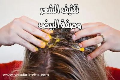 تكثيف الشعر الخفيف في اسرع وقت