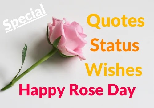 Rose Day Quotes Status Wishes