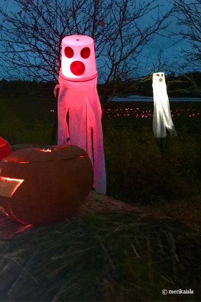Halloween aaveet Halikon kurpitsapellolla