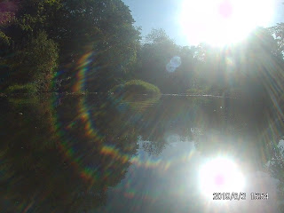 Sunlight makes a rainbow arc over a calm river, flanked by trees in full leaf