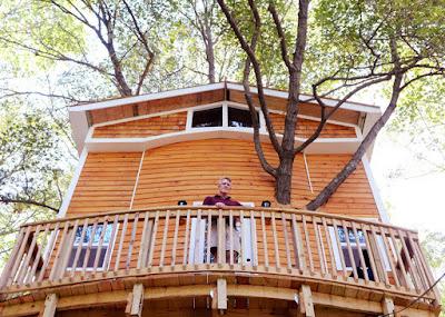 casa del árbol fabulosa